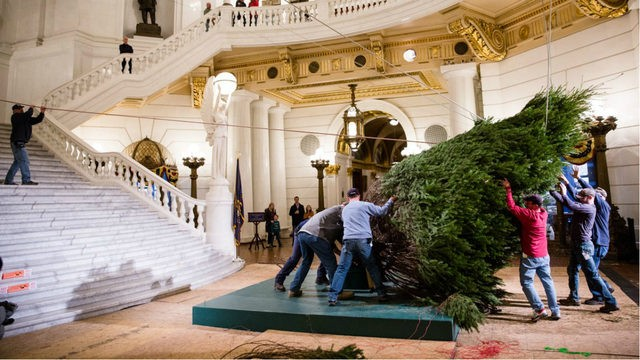 Christmas tree arrives at the state capital