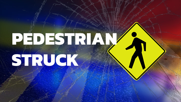 51 year old woman injured in Harrisburg hit and run