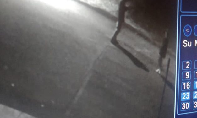 Dickson City Police release images ask for the public's help in finding vehicle thieves