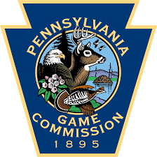 Game Commission: Pneumonia likely caused upper Dauphin deer deaths