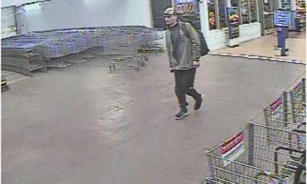 West Manheim Township looking for alleged electronics thief