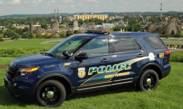 Derry Township Police searching for suspect in assault on woman and her dog