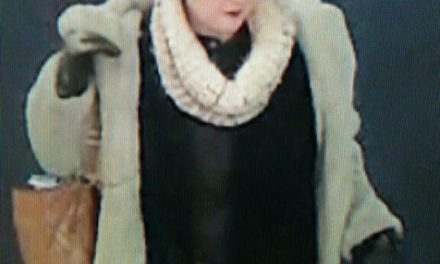 Police in Williamsport asking for help identifying woman