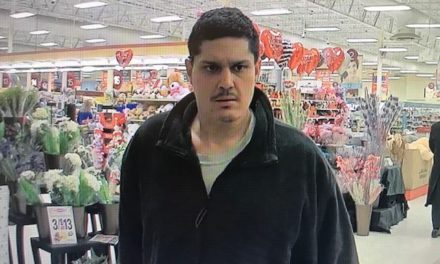 West Manchester Police ask for help to identify Weis Market shoplifters