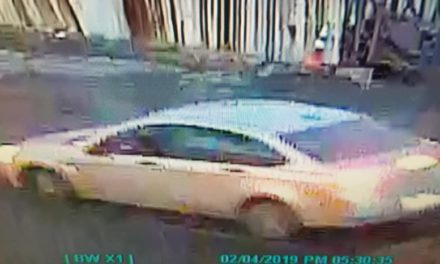 Scranton Police ask for the public's help identifying hit and run suspect