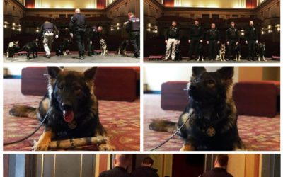 York County Sheriff K-9 Training at Appell Center for the Performing Arts