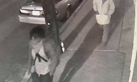 Kingston Police hope to identify suspects in vehicle break-ins