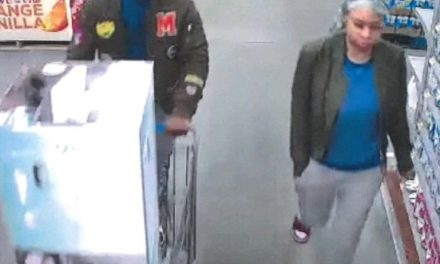 Lower Allen Township Police hope to identify alleged WalMart mattress thieves