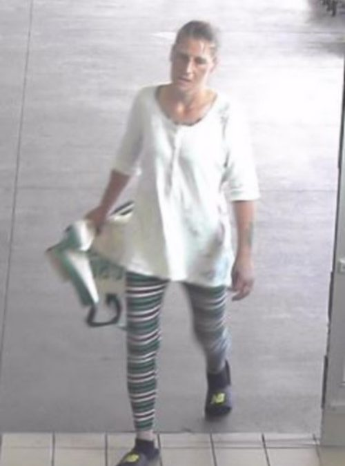 Can you help Susquehanna Township Police locate a suspect in a retail theft at Giant?