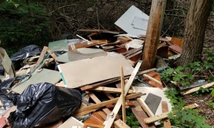 Lansford Police looking for illegal dumpers