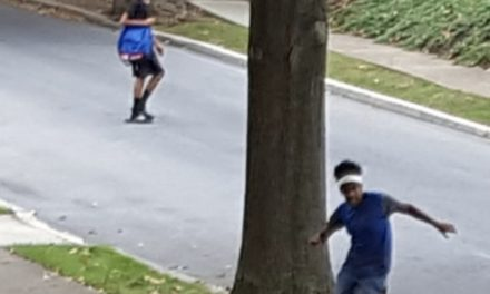 Penbrook Police ask for help identifying suspects they say rifled through vehicles