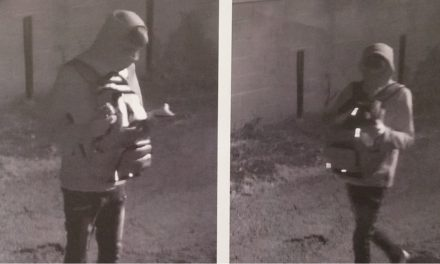 Hanover Borough Police ask for help to identify suspect