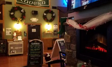 Burkes Tavern in Mount Pocono blunders food safety inspection, 2nd year in a row, pink and black mold on cuber head and ice shield of basement ice machine