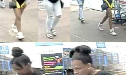 Police in Schuylkill County looking for credit card suspects in credit card thefts from cars