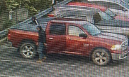 Scranton Police looking for suspects who stole parts from Scranton Toyota