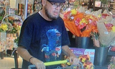 Springettsbury Township Police looking for men who they allege stole beer from Weis worth almost $200
