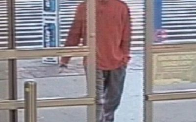 Lower Allen Township Police looking for suspect they say swiped TV at WalMart