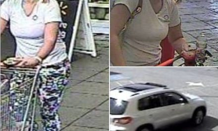 Springettsbury Township Police Department hope to identify alleged shoplifter