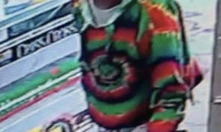 South Abington Township Police are asking for assistance in to identify suspects in purse theft, used victim's cards