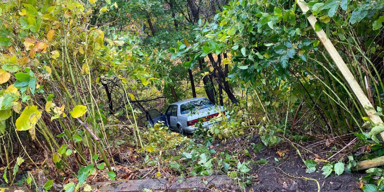 Car goes over embankment in Shenandoah Heights