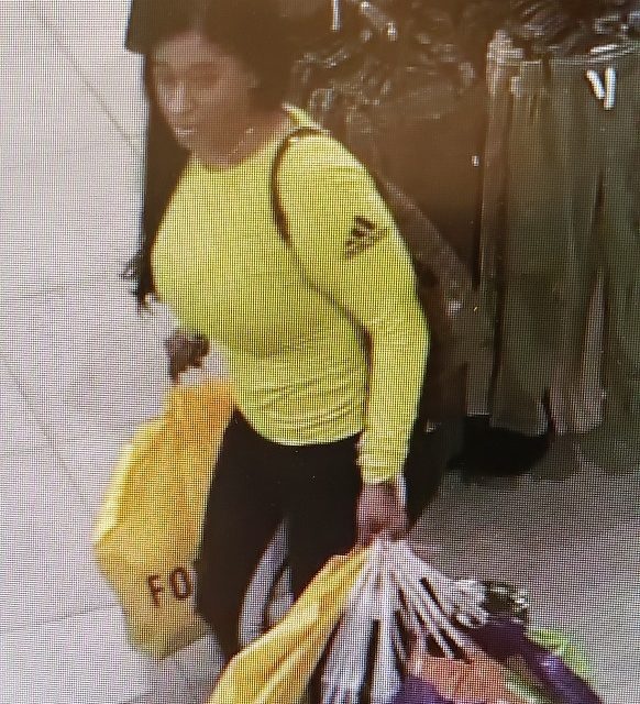Alleged thief  fraudulently bought over $1340 using stolen credit card