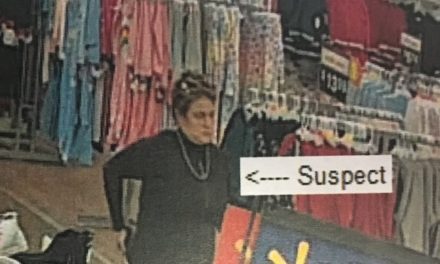 Mahoning Township Police looking to identify suspect in attempted credit card theft