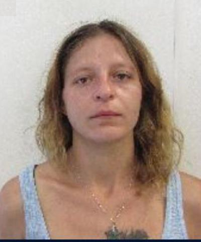 Alexis Steele, age 29, of Columbia arrested for stealing wallet with $6, tried to use debit cards