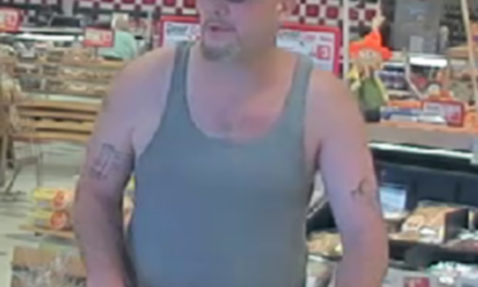 Susquehanna Township Police looking for suspect in theft of $300 in groceries from Weis Market