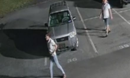 Silver Spring Township Police looking for tailgate thieves